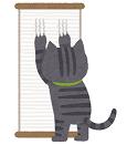 アパート退去猫